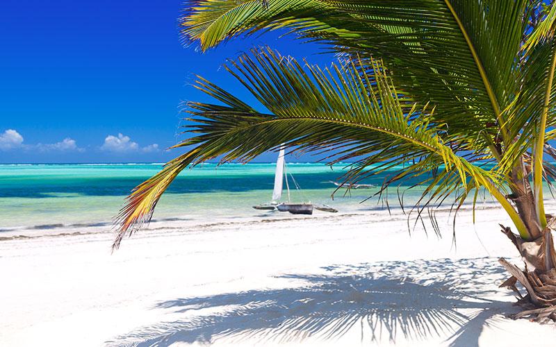 Op bounty eiland Zanzibar kunt u heerlijk uitrusten