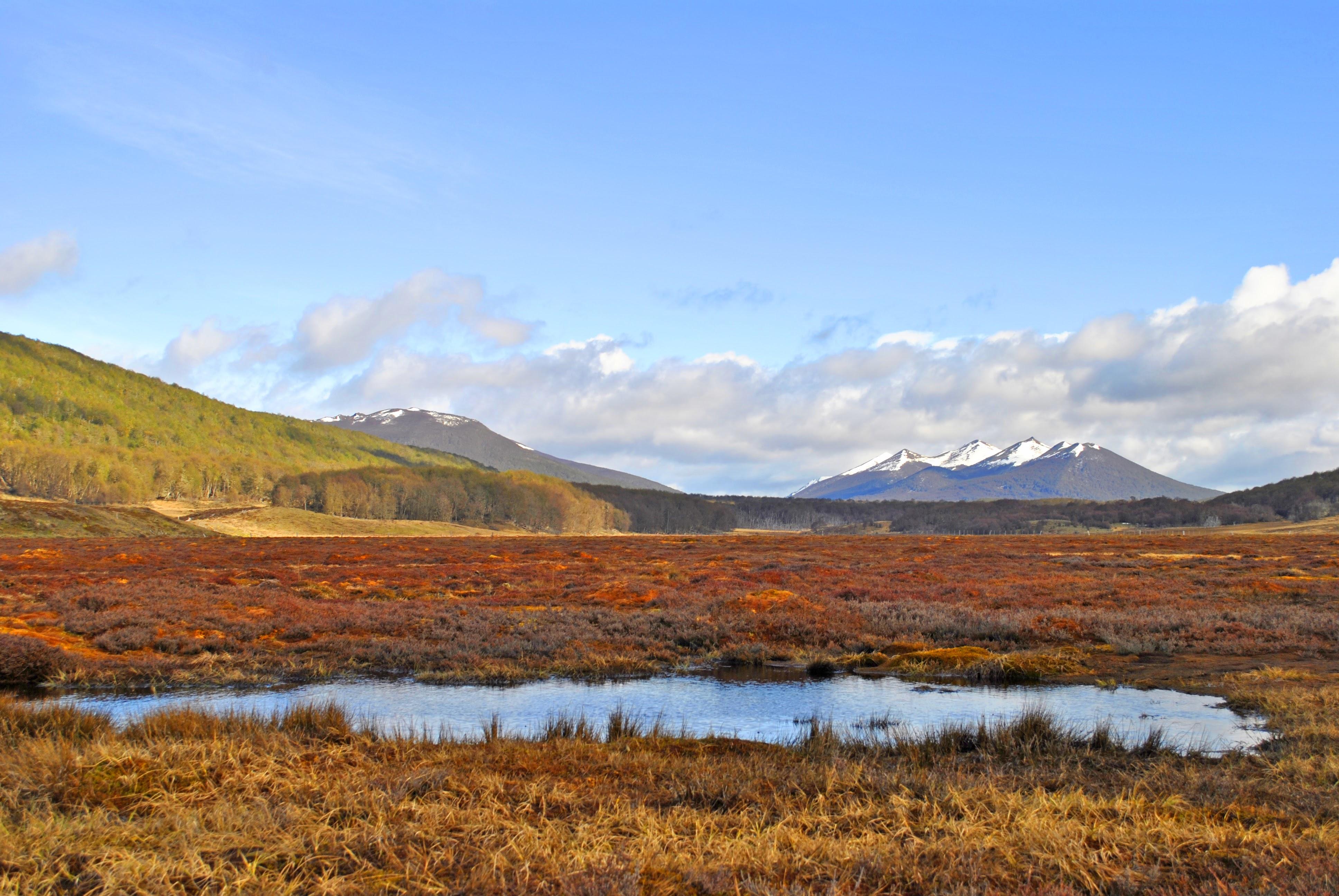 Bezoek Tierra del Fuego NP met de rondreis door Chili en Argentinië.