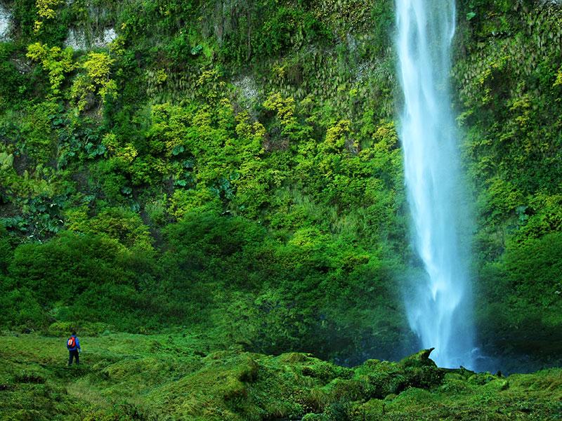 Tijdens onze rondreis Chili ziet u veel groen en mooie natuur.