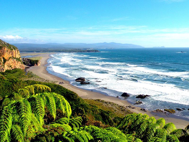U bezoekt de prachtige kustlijn van Chili tijdens uw reis.