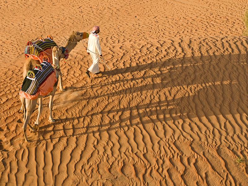 Maak een woestijntocht tijdens onze autorondreis Oman en Dubai