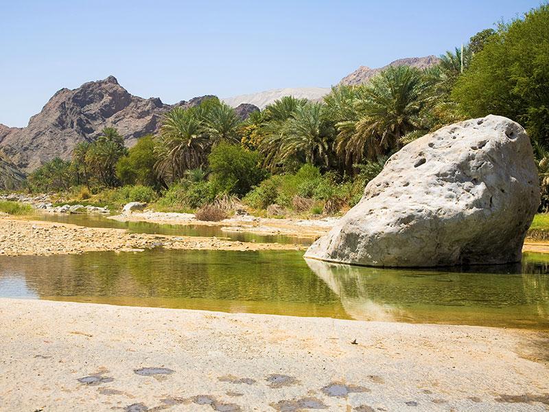 Wadi's zijn typisch voor Oman met prachtige flora en fauna