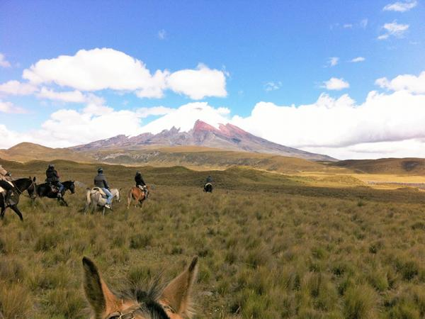 Rondom Cotopaxi kan men wandelen en paardrijden, ook tijdens onze rondreis.