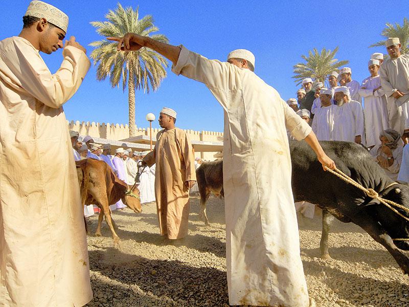 De geitenmarkt op vrijdag in Nizwa is de bekendste markt van Oman.