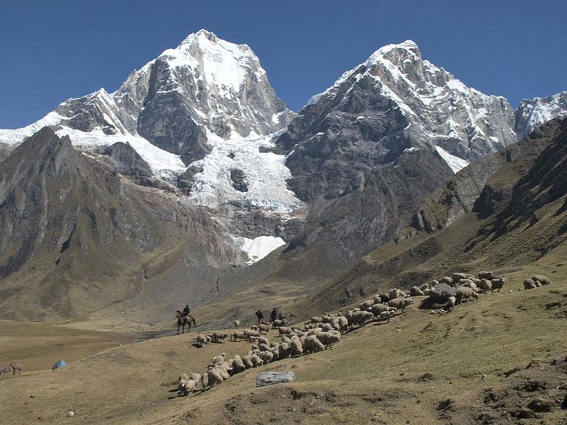 Besneeuwde bergtoppen vormen het decor voor onze rondreis Peru en Ecuador.