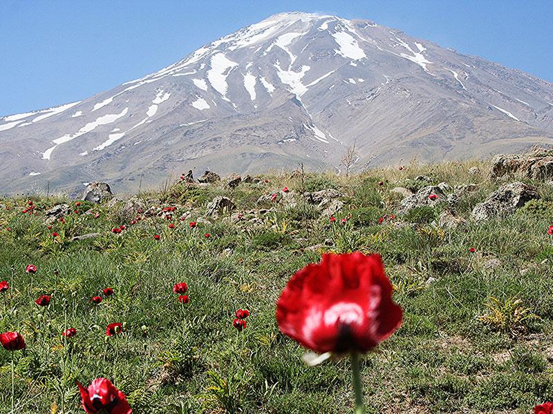 In Iran kunt u zelfs skien tijdens de rondreis.