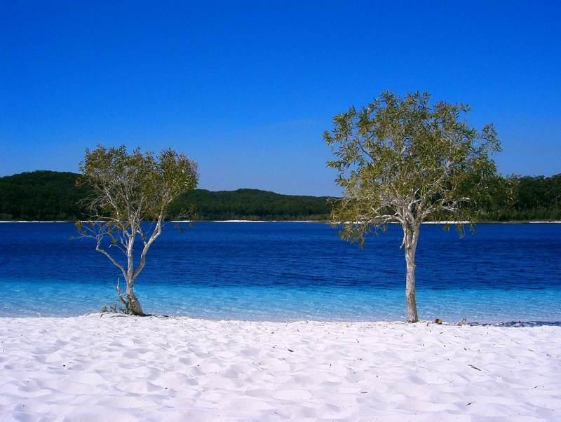 De strandbestemming Fraser Island