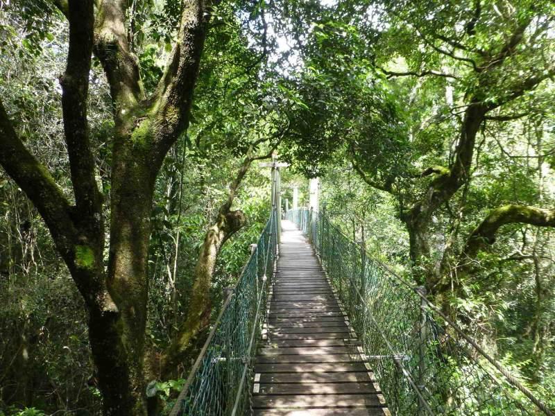 Bewonder de schitterende natuur tijdens uw rondreis australie