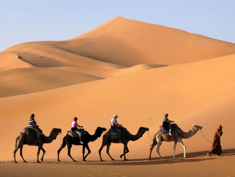 Erfoud biedt zeer mooie oases aan, zeker niet te missen tijdens deze autorondreis door Zuid-Marokko