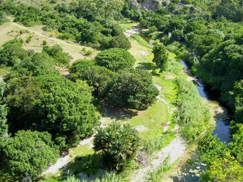 Zuid-Afrika biedt u de ruige jungle tot grootse vlaktes met een schitterend uitzicht