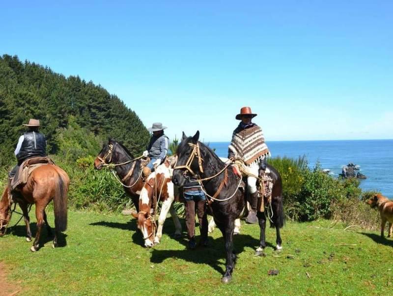 Mannen die op paarden zitten