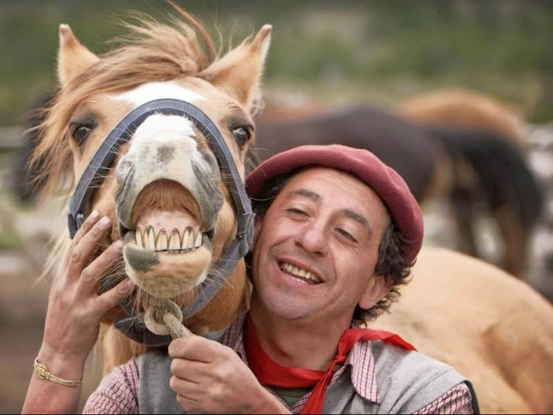 Een paard met een zichtbaar gebit en een man