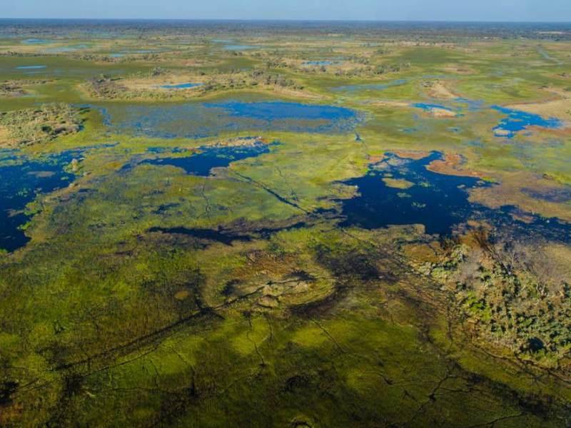 De Okavango Delta waar u tijdens uw rondreis door Botswana heen zult gaan