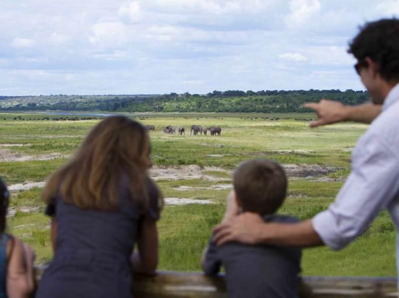 Tijdens uw rondreis door Botswana heeft u de mogelijkheid om op safari te gaan