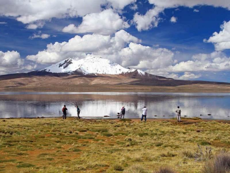 De mooie bergen en groene natuur in Chili en Argentinië