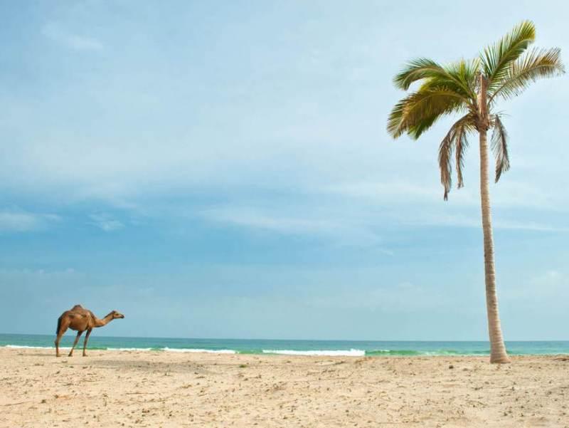 Een Omani man op het strand van uw vakantiebestemming in Salalah