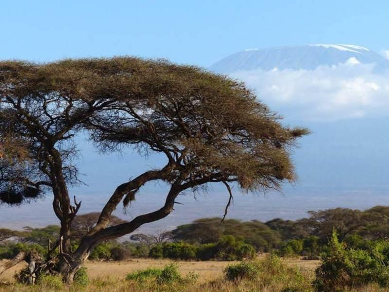 U zult uw rondreis door Tanzania starten in de prachtige plaats Kilimanjaro.