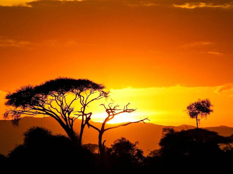 De prachtige zonsondergang die u gaat zien tijdens uw rondreis door Tanzania.
