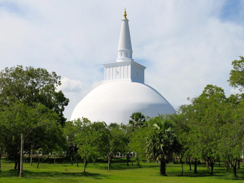 Sri lanka staat ook bekend om zijn thee export waaronder het plaatsje nuwara eliya.